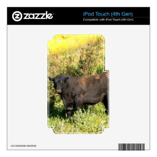 Bull iPod Touch 4G Decal