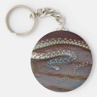 Bull Snake Basic Round Button Keychain