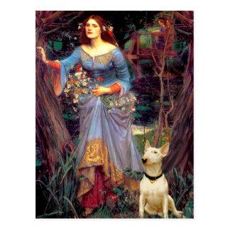 Bull Terrier 1 - Ophelia 1 Postcard