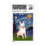 Bull terrier 4 - Noche estrellada (Vert) Envio