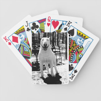 Bull terrier bicycle playing cards