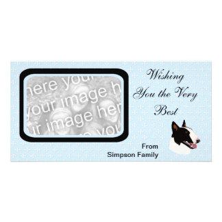 Bull Terrier ~ Blue w/ White Diamonds Design Card