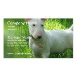 Bull Terrier Business Card