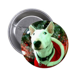bull terrier christmas pinback button