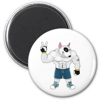 bull terrier dog  fight magnet