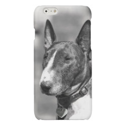 Case Savvy iPhone 6 Glossy Finish Case with Bull Terrier Phone Cases design