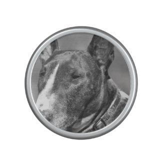 Bull Terrier dog Speaker