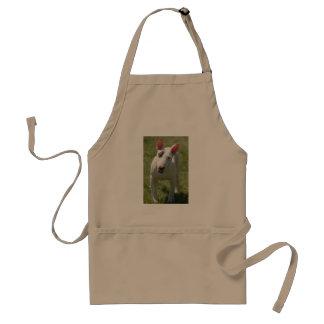 Bull terrier en campo herboso delantal