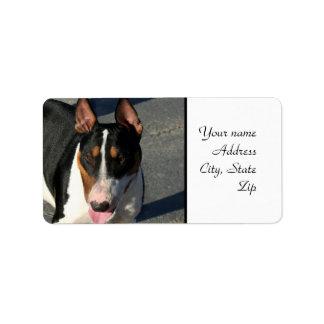 Bull terrier etiqueta de dirección