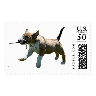 Bull Terrier Fetching Puppy Stamp
