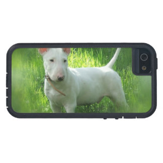 Bull terrier iPhone 5 Case-Mate carcasas
