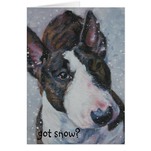 Bull terrier, got snow? Christmas card