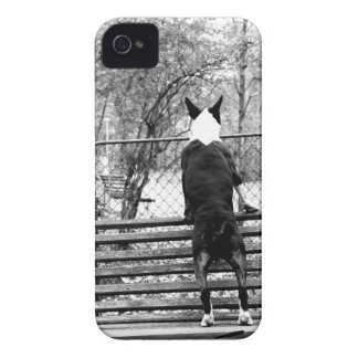 Bull terrier iPhone 4 Case-Mate case