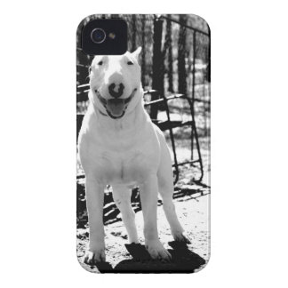 Bull terrier iPhone 4 cover