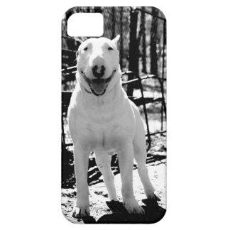 Bull terrier iPhone SE/5/5s case