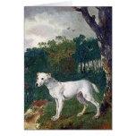 Bull Terrier Painting - Vintage Fine Art Greeting Cards