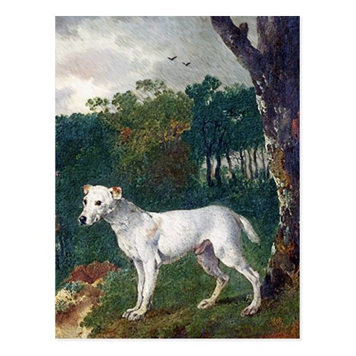 Bull Terrier Painting - Vintage Fine Art Postcard