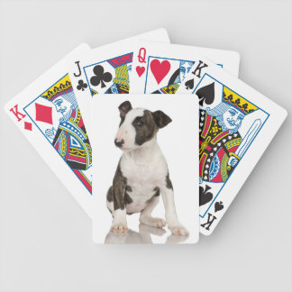 Bull Terrier Deck Of Cards