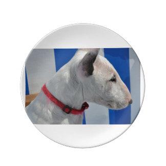 bull-terrier-.png plato de cerámica