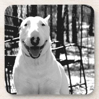 Bull terrier posavasos de bebidas