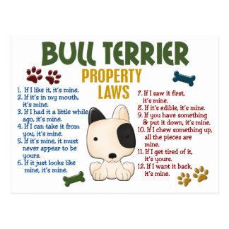 Bull Terrier Property Laws 4 Postcard