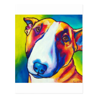 bull terrier red and white 2 postcard