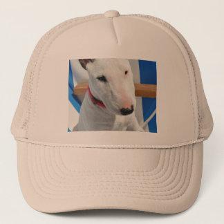 bull-terrier-sitting trucker hat