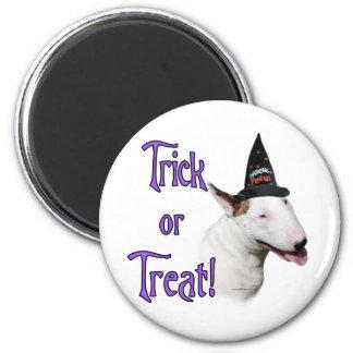 Bull Terrier Trick Magnet