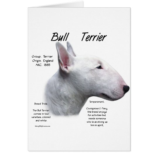 Bull Terrier (wht) History Design Card