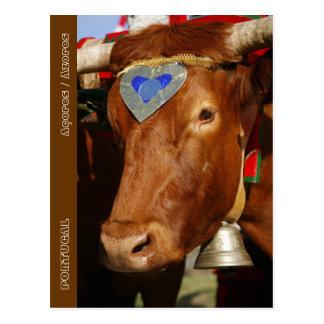 Bull y campana postales