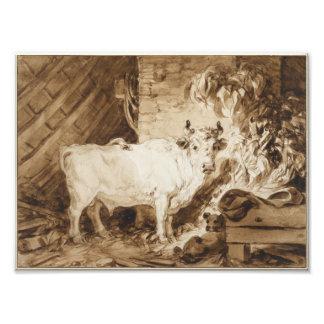 Bull y perro blancos en un establo por Fragonard Fotografía