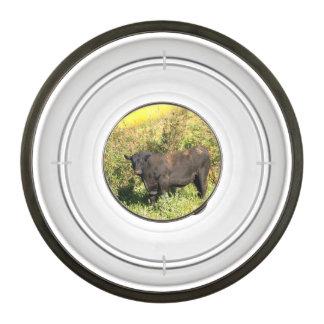 Bull Pet Bowl