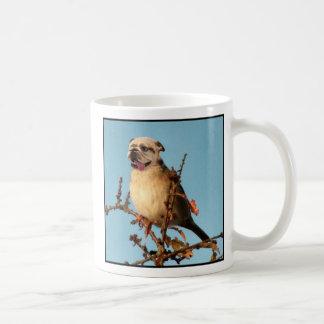 Bullbird mug