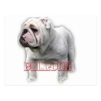 Bulldog  ブルドッグ postcard