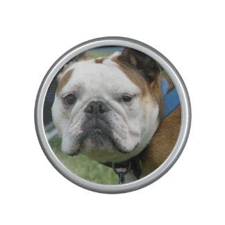 bulldog-19 altavoz