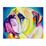 Bulldog #1 postcard