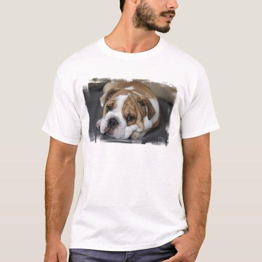 Bulldog t shirt zazzle T shirts for english bulldogs