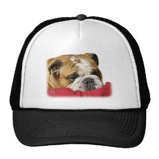 Bulldog 9W099D-003 Trucker Hat