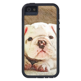 Bulldog Baby iPhone SE/5/5s Case