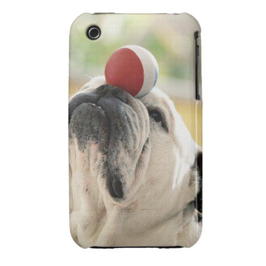 Bulldog balancing ball on snout, close-up Case-Mate iPhone 3 case
