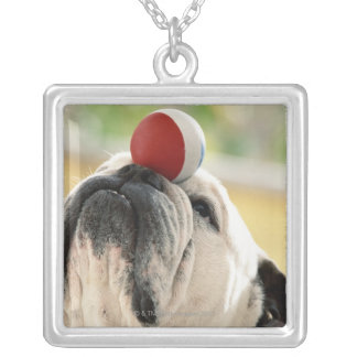 Bulldog balancing ball on snout, close-up square pendant necklace