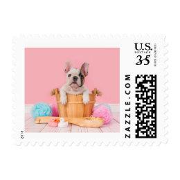 Bulldog Bath Postage
