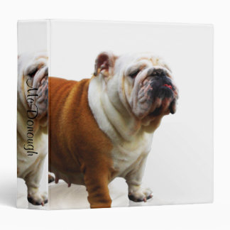 Bulldog Vinyl Binders