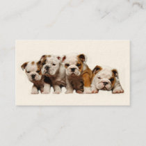 Bulldog Breeder Business Card
