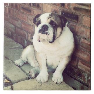 Bulldog Ceramic tile
