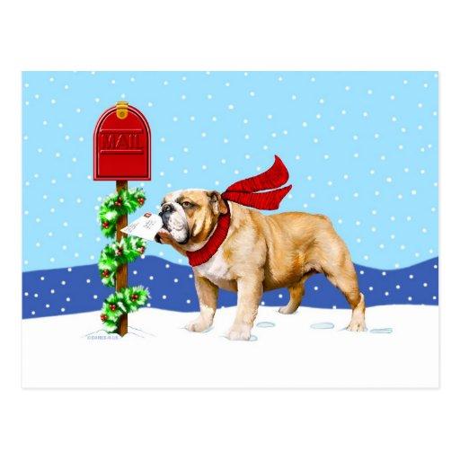 Bulldog Christmas Holiday Mail Postcard