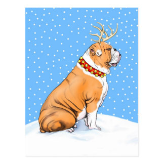 Bulldog Christmas Reindeer Red & White Postcard