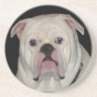 Bulldog Coasters