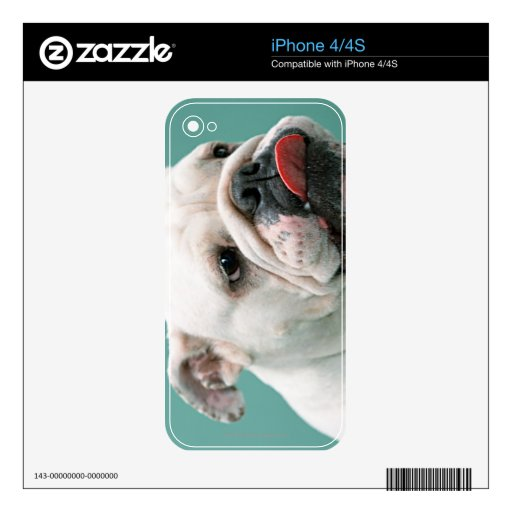 Bulldog Decal For iPhone 4S