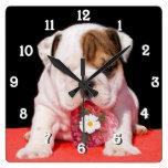 Bulldog dog square clock